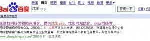 张建群:沈阳网站优化关键词排名第八了