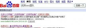 沈阳SEO团队博客百度收录了